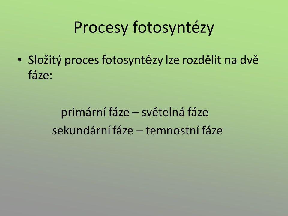 Procesy fotosyntézy Složitý proces fotosynt é zy lze rozdělit na dvě fáze: primární fáze – světelná fáze sekundární fáze – temnostní fáze