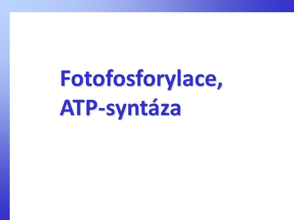 Fotofosforylace,ATP-syntáza