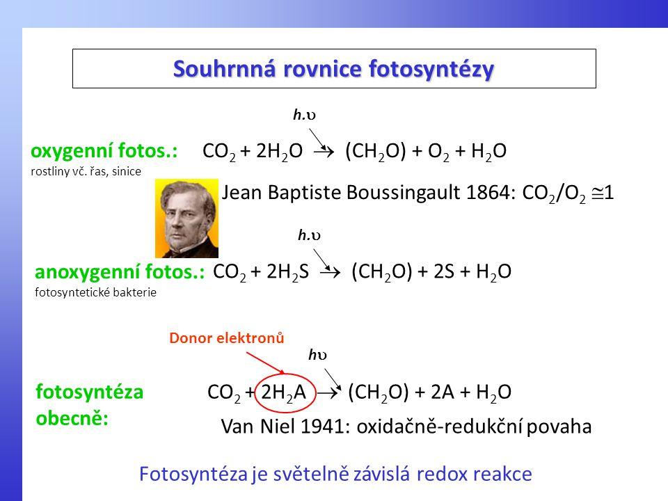 CO 2 + 2H 2 S  (CH 2 O) + 2S + H 2 O h.  anoxygenní fotos.: fotosyntetické bakterie Souhrnná rovnice fotosyntézy CO 2 + 2H 2 O  (CH 2 O) + O 2 + H