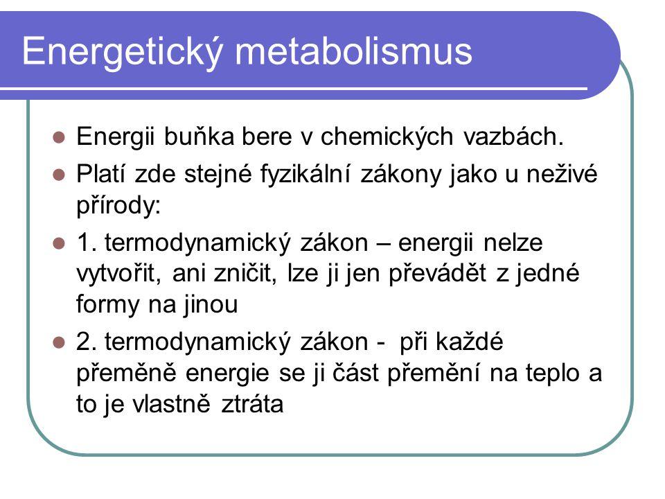 Energetický metabolismus Energii buňka bere v chemických vazbách. Platí zde stejné fyzikální zákony jako u neživé přírody: 1. termodynamický zákon – e