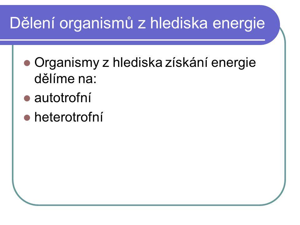 Dělení organismů z hlediska energie Organismy z hlediska získání energie dělíme na: autotrofní heterotrofní