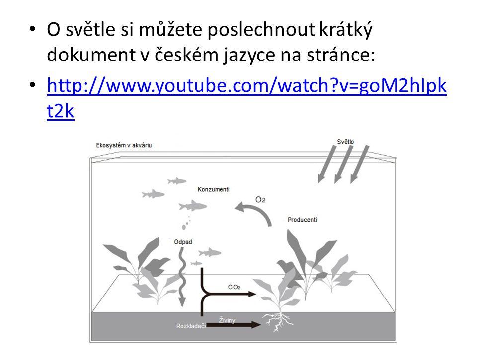 O světle si můžete poslechnout krátký dokument v českém jazyce na stránce: http://www.youtube.com/watch?v=goM2hIpk t2k http://www.youtube.com/watch?v=