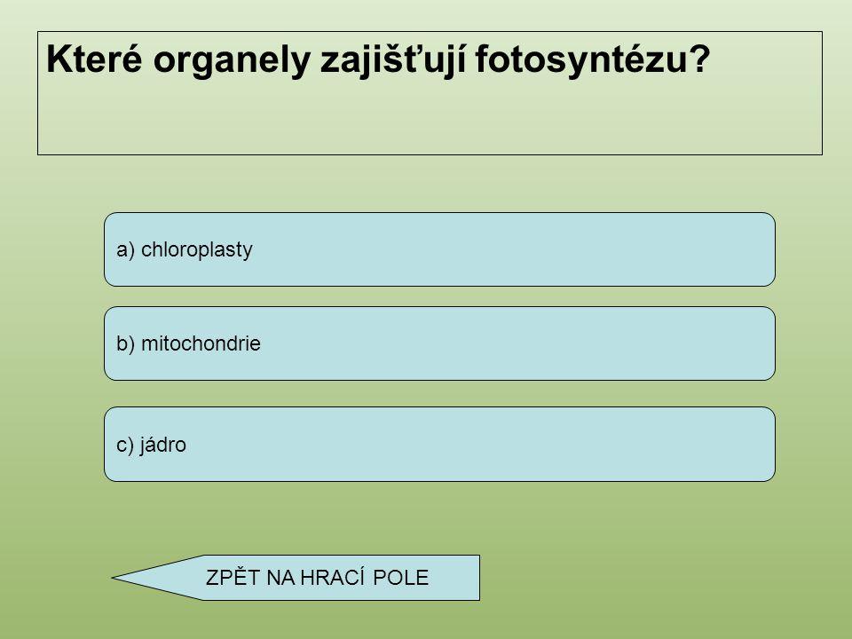 a) vakuoly b) bílek c) cytoplazma Co vyplňuje vnitřek buňky? ZPĚT NA HRACÍ POLE