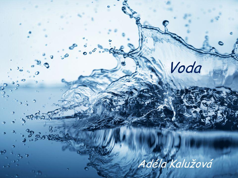 Voda Adéla Kalužová