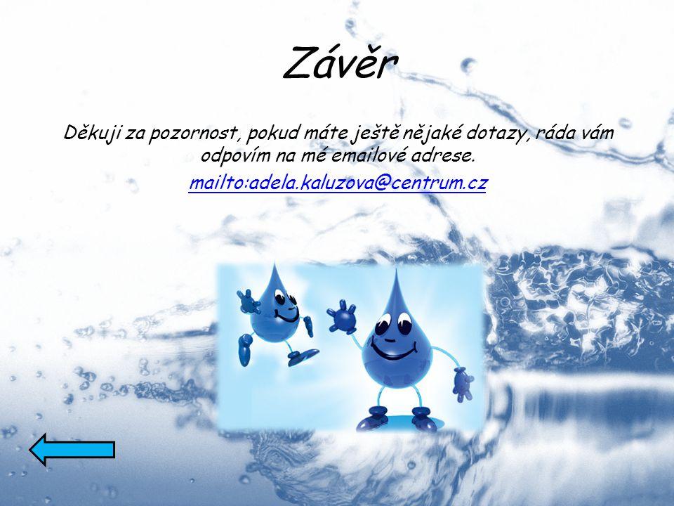 Závěr Děkuji za pozornost, pokud máte ještě nějaké dotazy, ráda vám odpovím na mé emailové adrese. mailto:adela.kaluzova@centrum.cz