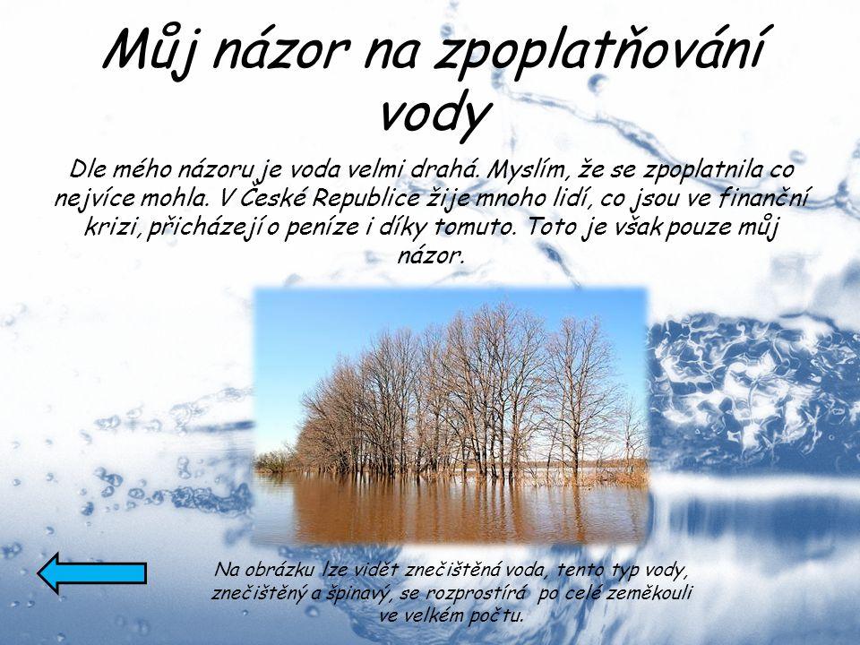 Můj názor na zpoplatňování vody Dle mého názoru je voda velmi drahá. Myslím, že se zpoplatnila co nejvíce mohla. V České Republice žije mnoho lidí, co