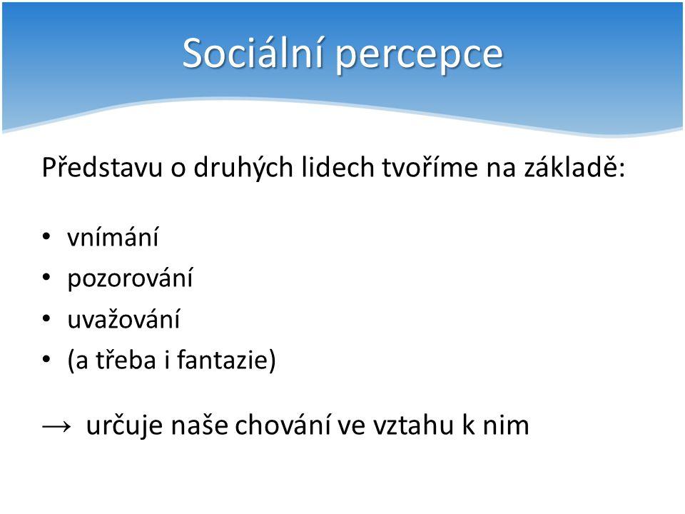 Sociální percepce Představu o druhých lidech tvoříme na základě: vnímání pozorování uvažování (a třeba i fantazie) → určuje naše chování ve vztahu k n