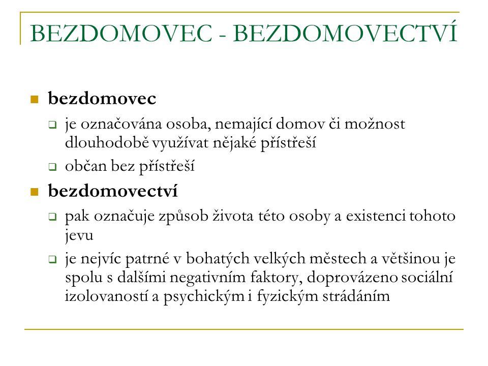 LEGISLATIVNÍ VYMEZENÍ podle českého právního řádu jde o osobu bez státního občanství.