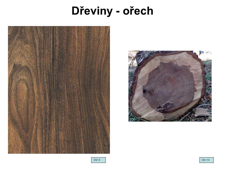 Dřeviny - ořech Obr.9Obr.10