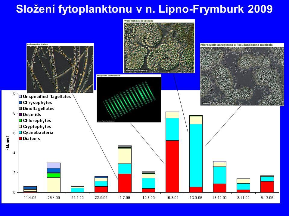 Složení fytoplanktonu v n. Lipno-Frymburk 2009
