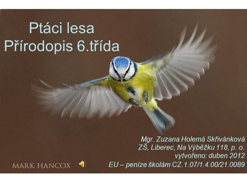 Ptáci lesa Přírodopis 6.třída Mgr. Zuzana Holemá Skřivánková ZŠ, Liberec, Na Výběžku 118, p. o. vytvořeno: duben 2012 EU – peníze školám CZ.1.07/1.4.0