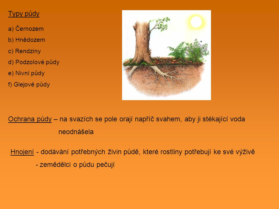 Typy půdy a) Černozem b) Hnědozem c) Rendziny d) Podzolové půdy e) Nivní půdy f) Glejové půdy Ochrana půdy – na svazích se pole orají napříč svahem, a