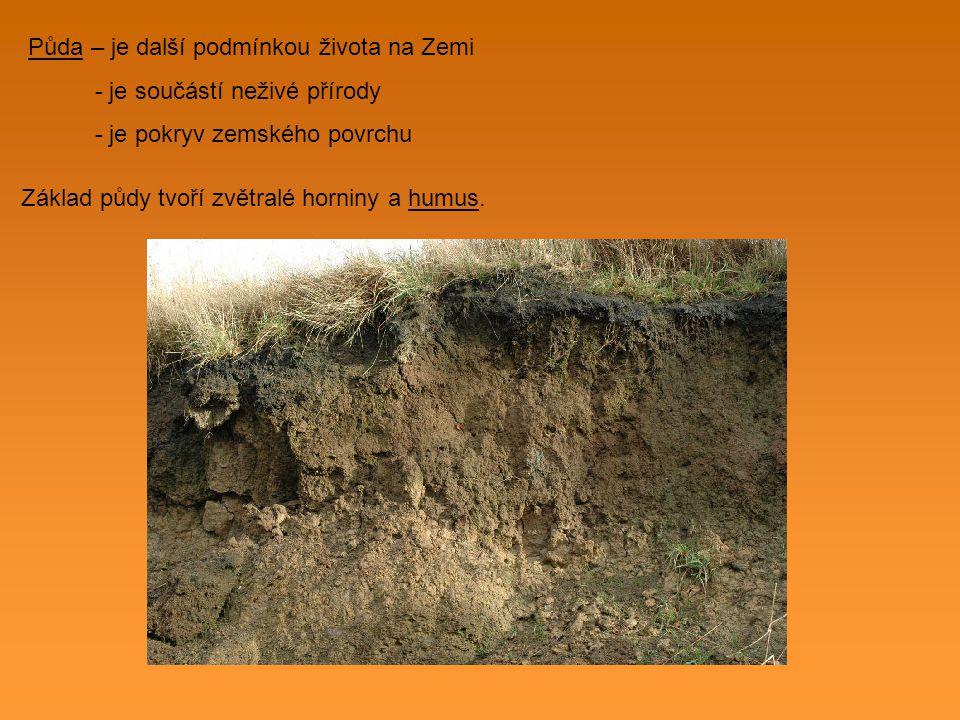 Půda – je další podmínkou života na Zemi - je součástí neživé přírody - je pokryv zemského povrchu Základ půdy tvoří zvětralé horniny a humus.