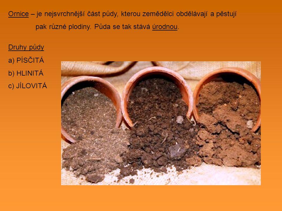Typy půdy a) Černozem b) Hnědozem c) Rendziny d) Podzolové půdy e) Nivní půdy f) Glejové půdy Ochrana půdy – na svazích se pole orají napříč svahem, aby ji stékající voda neodnášela Hnojení - dodávání potřebných živin půdě, které rostliny potřebují ke své výživě - zemědělci o půdu pečují