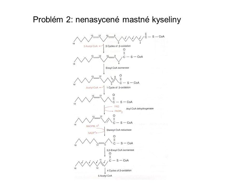Problém 2: nenasycené mastné kyseliny