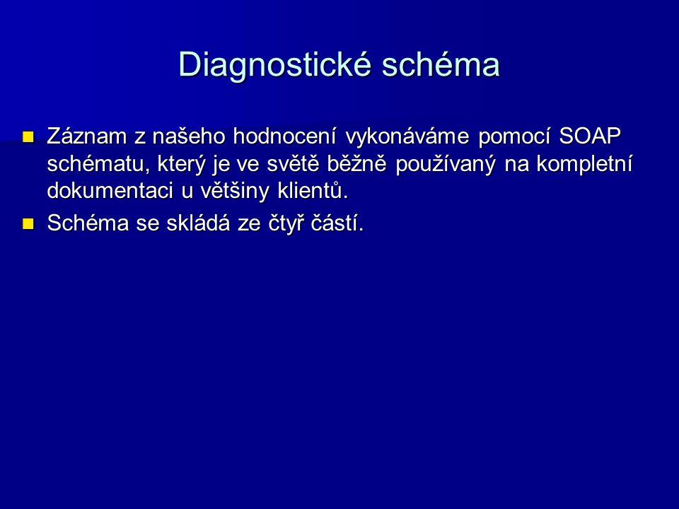 Diagnostické schéma Záznam z našeho hodnocení vykonáváme pomocí SOAP schématu, který je ve světě běžně používaný na kompletní dokumentaci u většiny kl