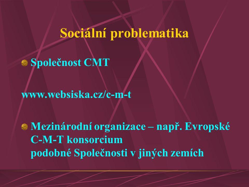 Sociální problematika Společnost CMT www.websiska.cz/c-m-t Mezinárodní organizace – např. Evropské C-M-T konsorcium podobné Společnosti v jiných zemíc