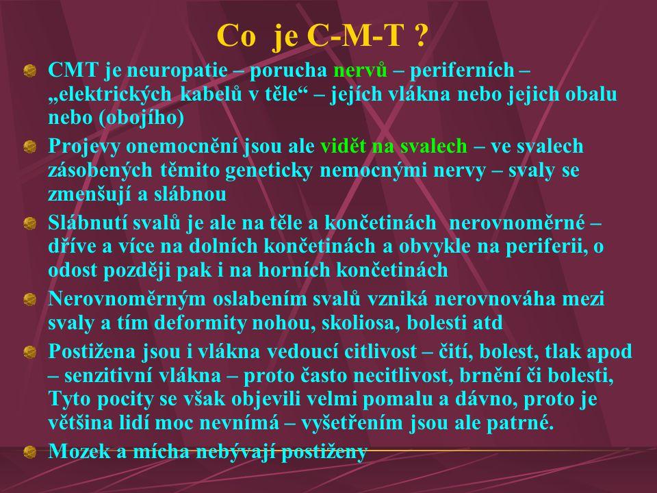 """Co je C-M-T ? CMT je neuropatie – porucha nervů – periferních – """"elektrických kabelů v těle"""" – jejích vlákna nebo jejich obalu nebo (obojího) Projevy"""