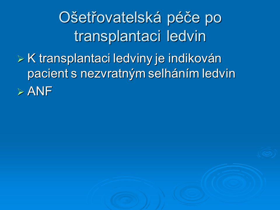 Ošetřovatelská péče po transplantaci ledvin  K transplantaci ledviny je indikován pacient s nezvratným selháním ledvin  ANF
