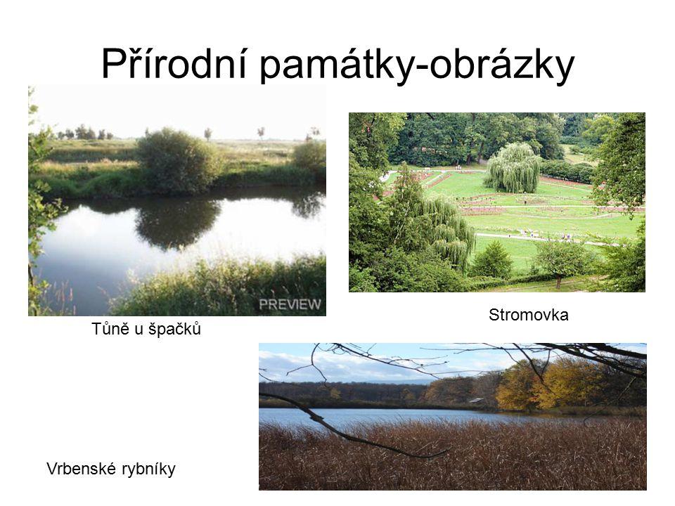 Přírodní památky-obrázky Stromovka Tůně u špačků Vrbenské rybníky