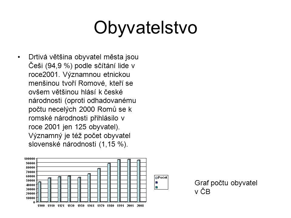 Obyvatelstvo Drtivá většina obyvatel města jsou Češi (94,9 %) podle sčítání lide v roce2001. Významnou etnickou menšinou tvoří Romové, kteří se ovšem