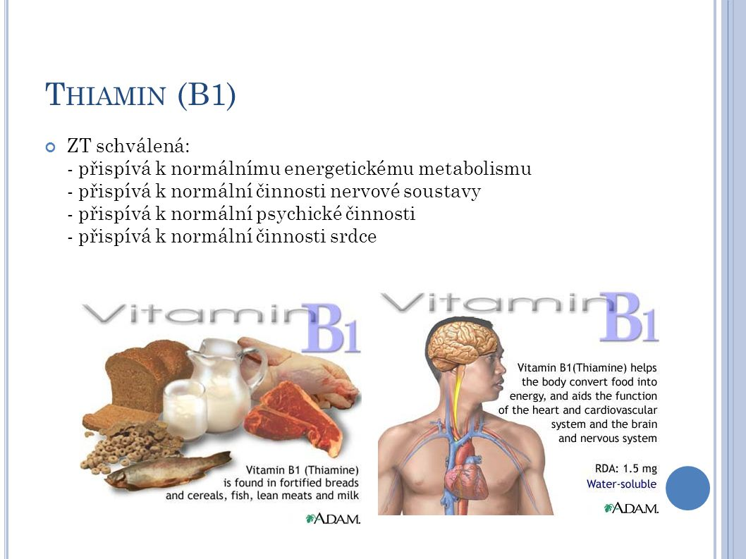 T HIAMIN (B1) ZT schválená: - přispívá k normálnímu energetickému metabolismu - přispívá k normální činnosti nervové soustavy - přispívá k normální psychické činnosti - přispívá k normální činnosti srdce