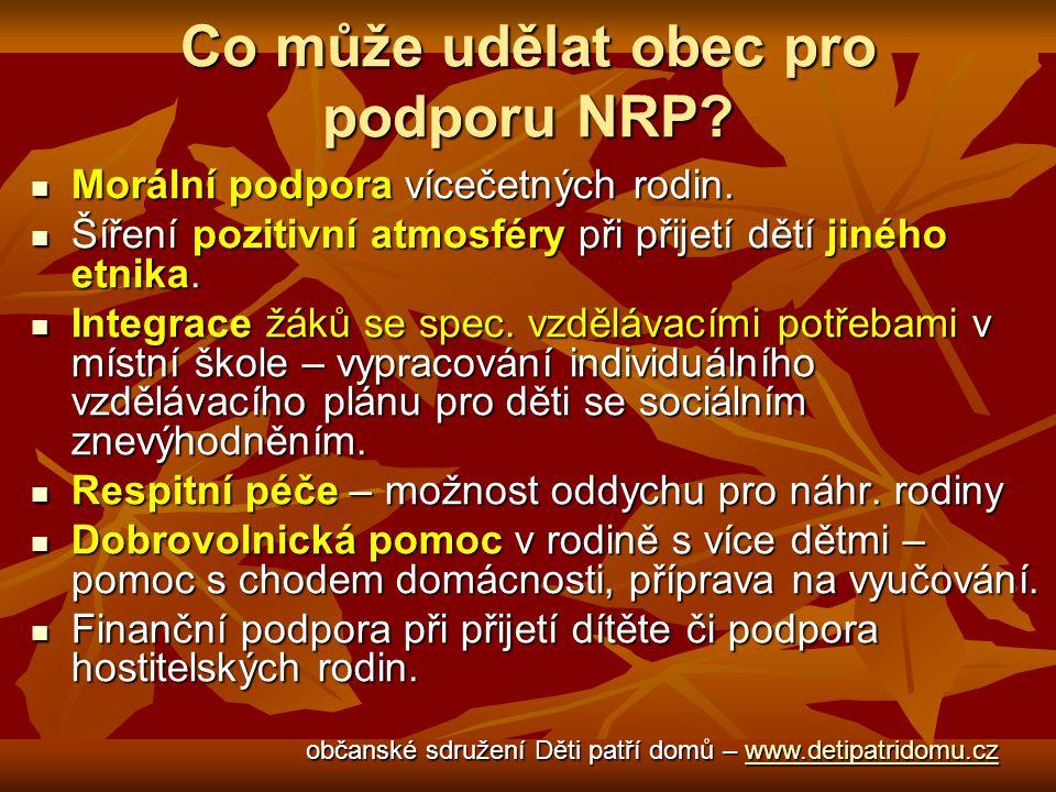 Co může udělat obec pro podporu NRP. Morální podpora vícečetných rodin.