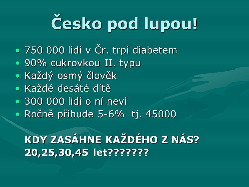 Česko pod lupou! 750 000 lidí v Čr. trpí diabetem750 000 lidí v Čr. trpí diabetem 90% cukrovkou II. typu90% cukrovkou II. typu Každý osmý člověkKaždý
