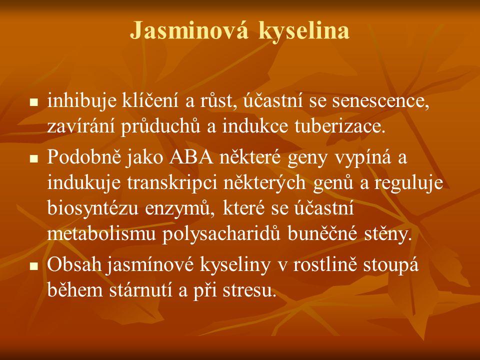 Jasminová kyselina inhibuje klíčení a růst, účastní se senescence, zavírání průduchů a indukce tuberizace. Podobně jako ABA některé geny vypíná a indu