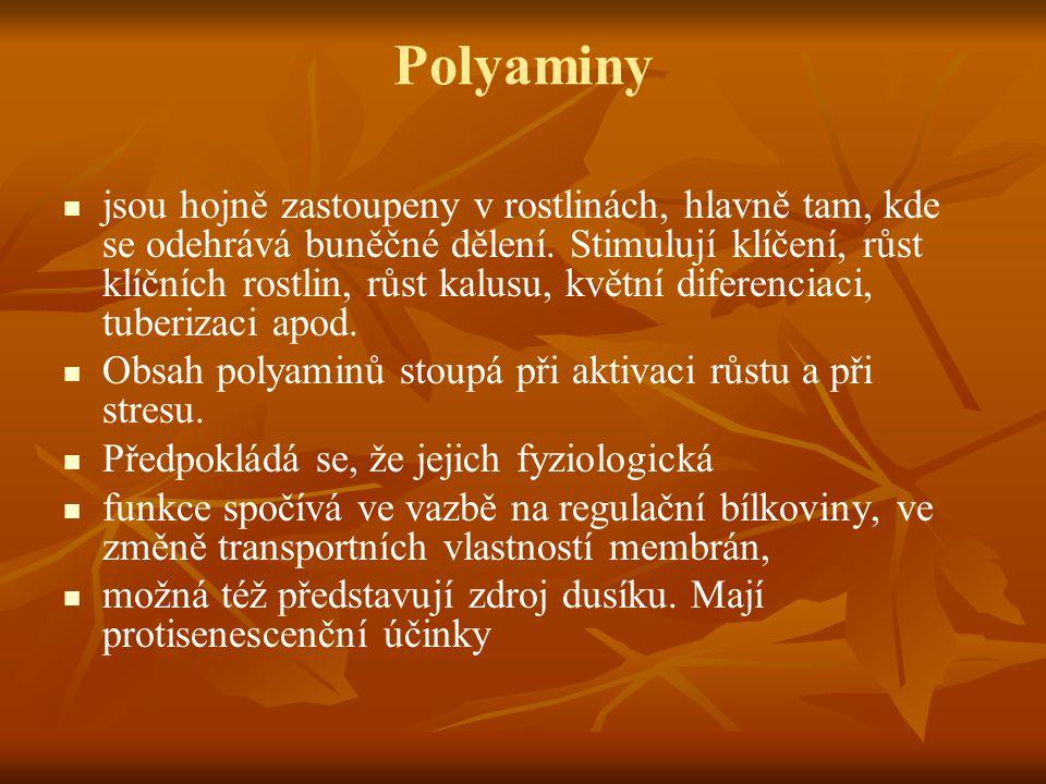 Polyaminy jsou hojně zastoupeny v rostlinách, hlavně tam, kde se odehrává buněčné dělení. Stimulují klíčení, růst klíčních rostlin, růst kalusu, květn