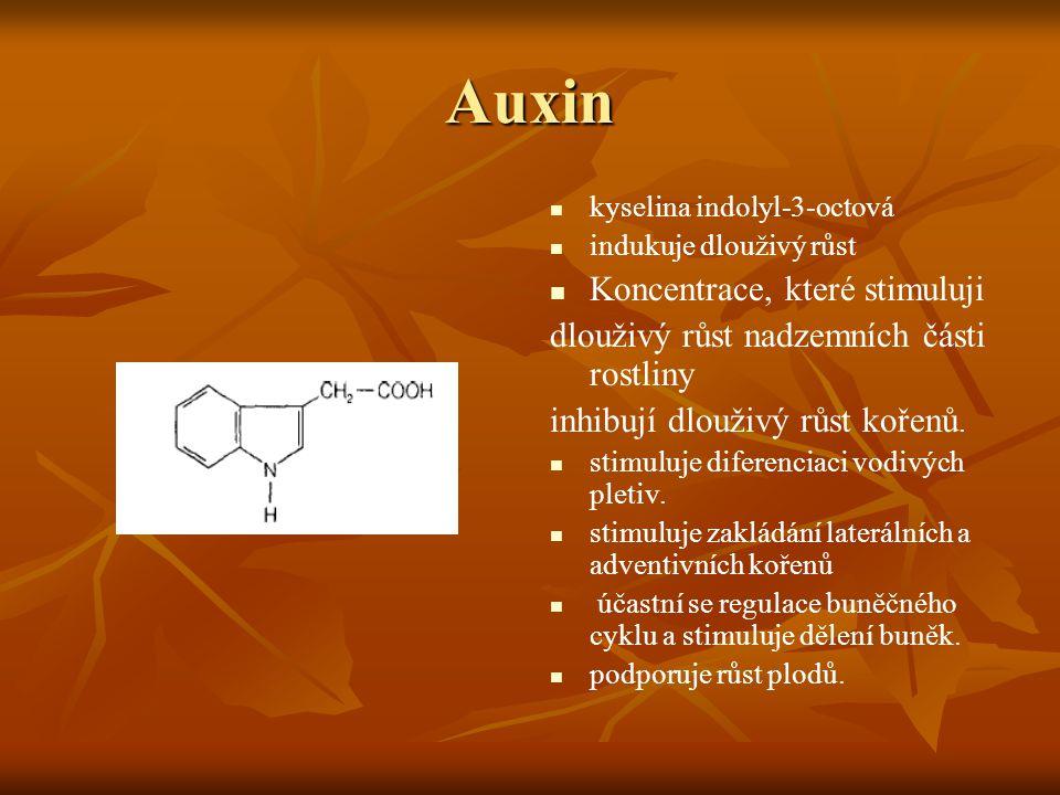 Auxin kyselina indolyl-3-octová indukuje dlouživý růst Koncentrace, které stimuluji dlouživý růst nadzemních části rostliny inhibují dlouživý růst koř