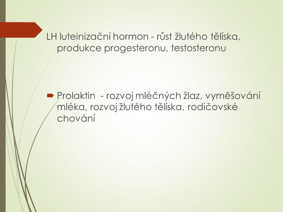 LH luteinizační hormon - růst žlutého tělíska, produkce progesteronu, testosteronu  Prolaktin - rozvoj mléčných žlaz, vyměšování mléka, rozvoj žlutého tělíska, rodičovské chování
