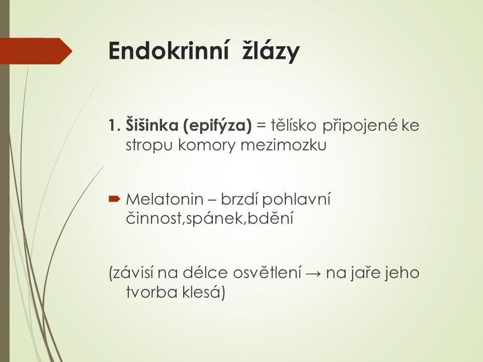 Endokrinní žlázy 1.