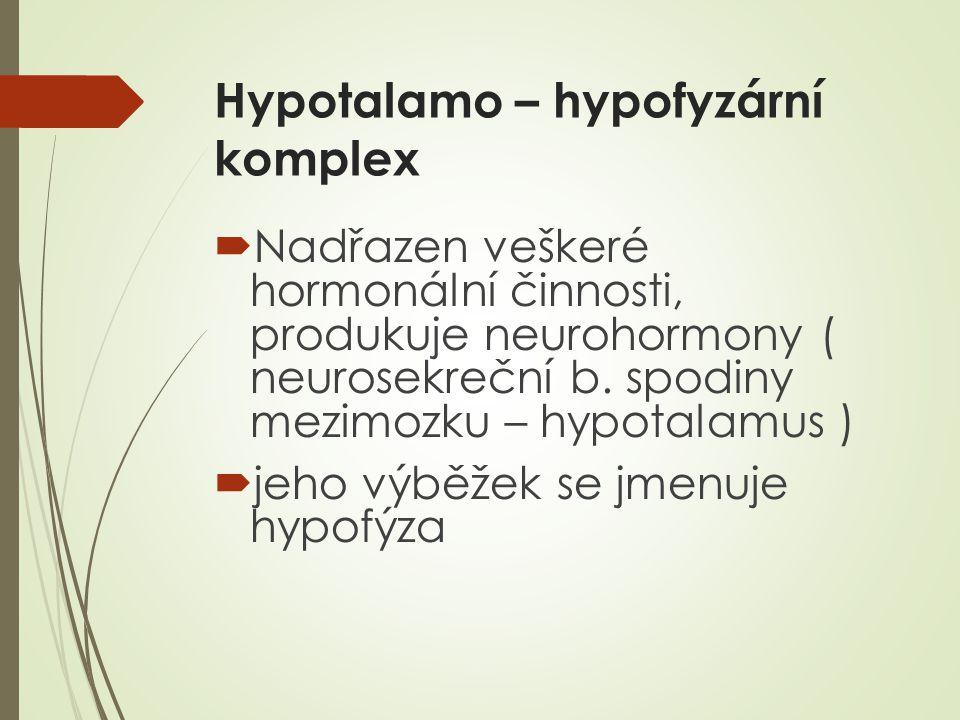 Hypotalamo – hypofyzární komplex  Nadřazen veškeré hormonální činnosti, produkuje neurohormony ( neurosekreční b.