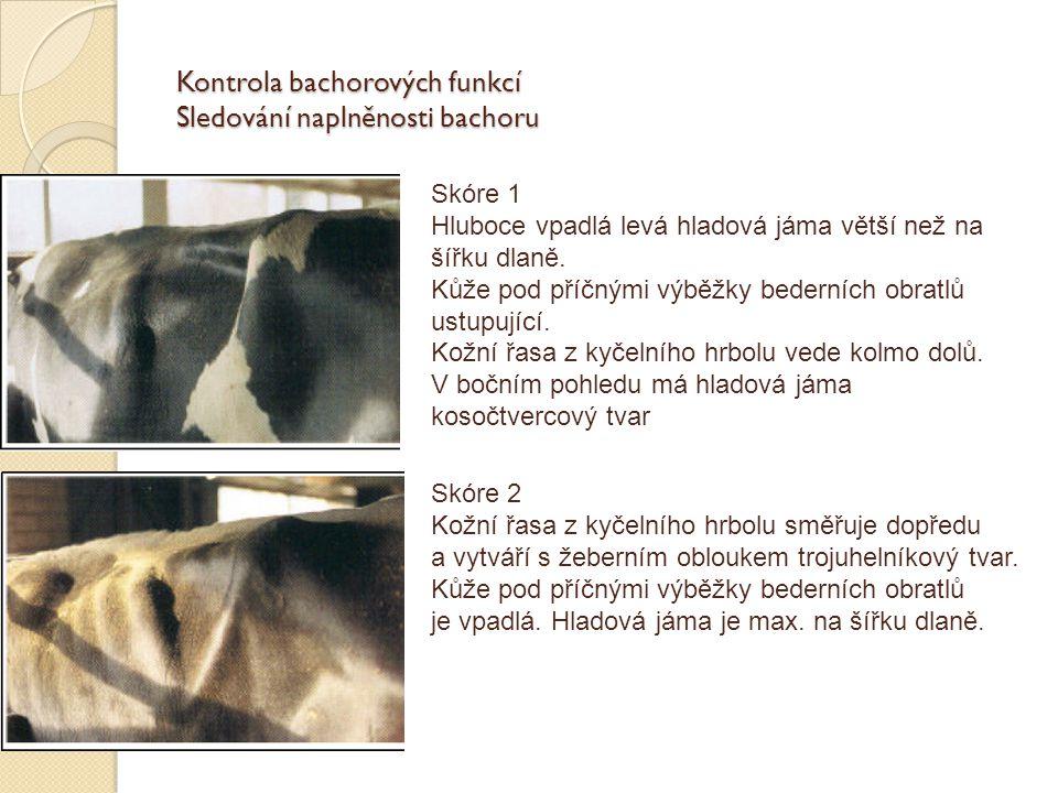 Kontrola bachorových funkcí Sledování naplněnosti bachoru Skóre 1 Hluboce vpadlá levá hladová jáma větší než na šířku dlaně. Kůže pod příčnými výběžky
