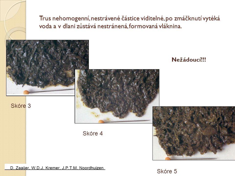 Trus nehomogenní, nestrávené částice viditelné, po zmáčknutí vytéká voda a v dlani zůstává nestránená, formovaná vláknina. Skóre 3 Skóre 4 Skóre 5 Než