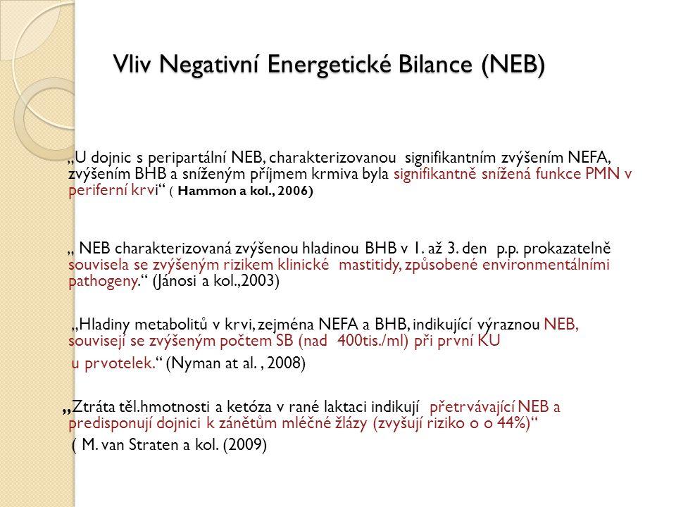 """Vliv Negativní Energetické Bilance (NEB) """"U dojnic s peripartální NEB, charakterizovanou signifikantním zvýšením NEFA, zvýšením BHB a sníženým příjmem"""