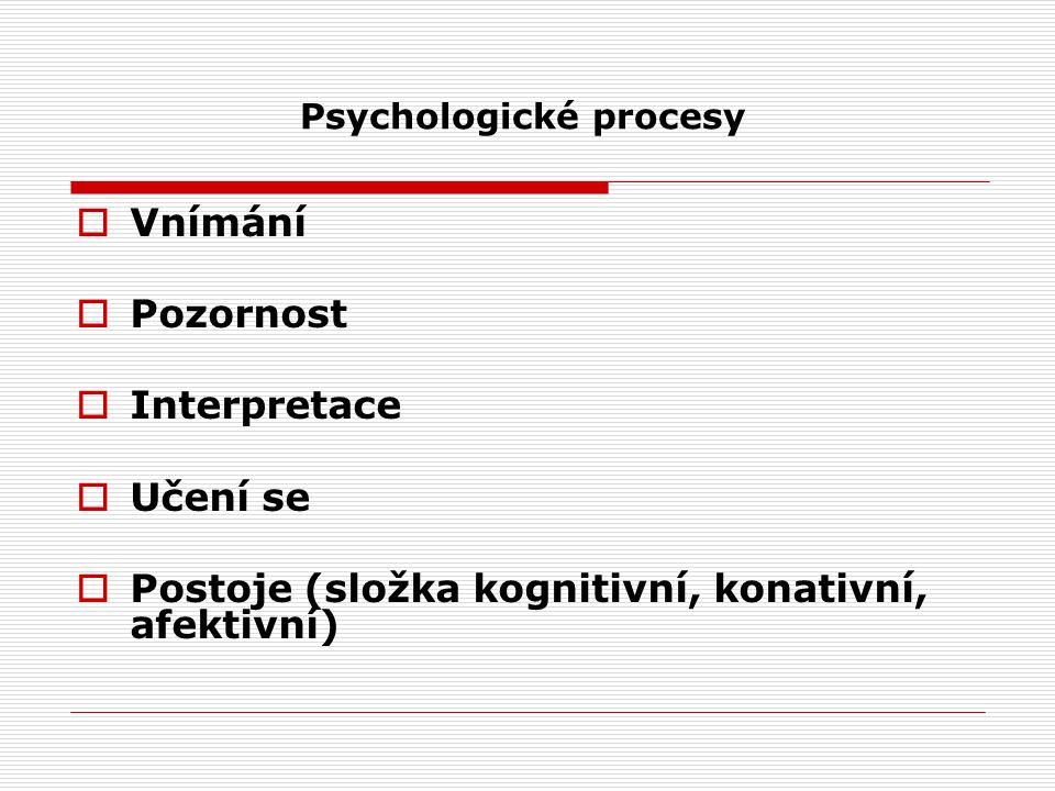  Vnímání  Pozornost  Interpretace  Učení se  Postoje (složka kognitivní, konativní, afektivní) Psychologické procesy