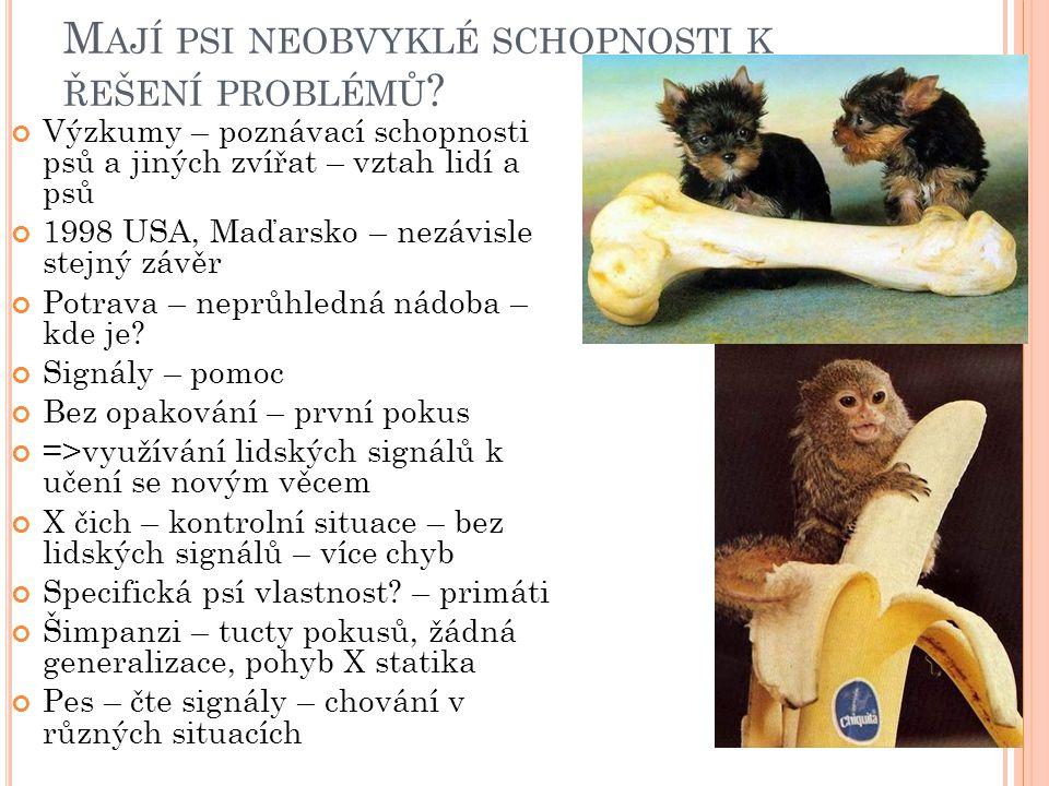 M AJÍ PSI NEOBVYKLÉ SCHOPNOSTI K ŘEŠENÍ PROBLÉMŮ ? Výzkumy – poznávací schopnosti psů a jiných zvířat – vztah lidí a psů 1998 USA, Maďarsko – nezávisl