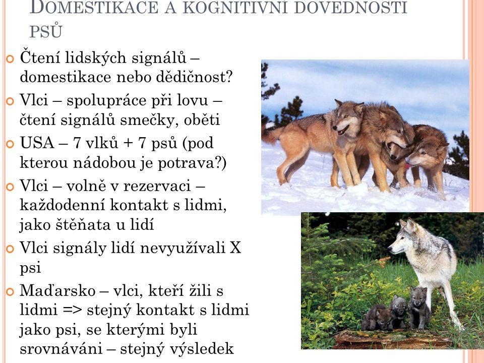 D OMESTIKACE A KOGNITIVNÍ DOVEDNOSTI PSŮ Využívání lidí k řešení problémů, na které sami nestačí (psi X vlci) Překážka mezi potravou – naučili se, jak odstranit Nový úkol – nešla odstranit => vlci – nové strategie X psi se vzdali, přiblížili k výzkumníkovi, koukali na něho a vyštěkávali - využívali lidi, aby získali, co chtějí =>tato schopnost se vyvinula během domestikace