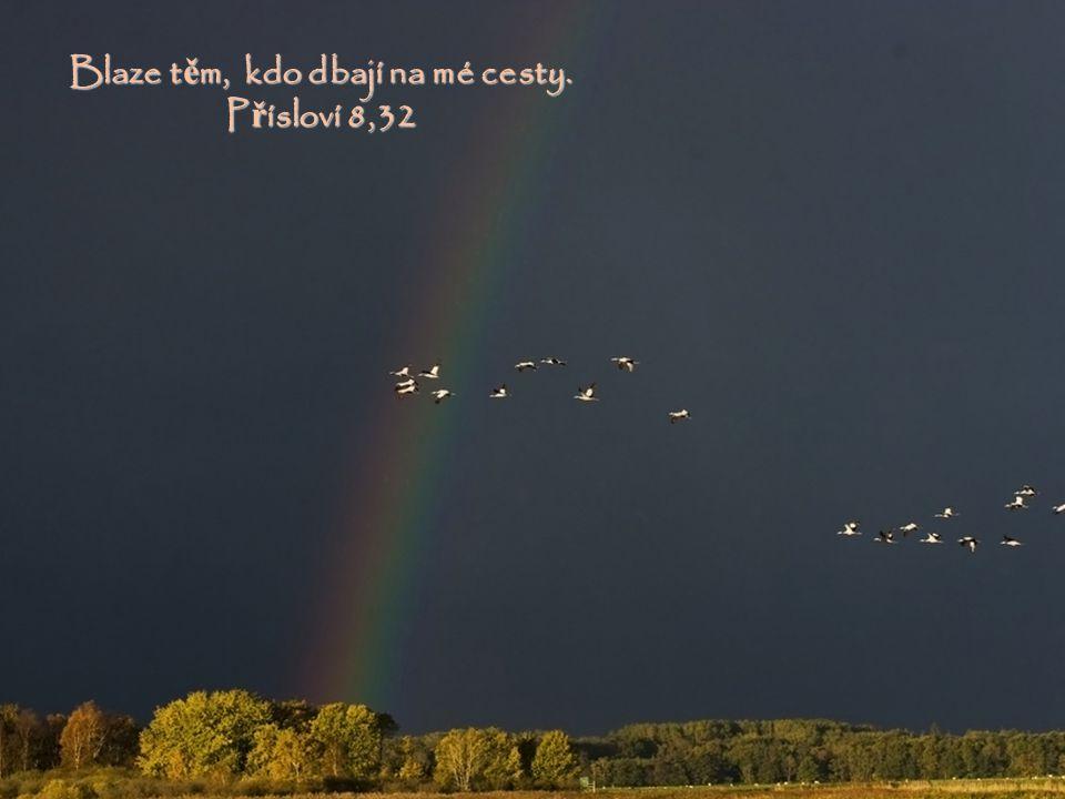 St ů jte na cestách a vyhlí ž ejte, ptejte se na stezky v ěč nosti: Kde je ta dobrá cesta? Vydejte se po ní a vaše duše naleznou klid. Jeremjáš 6,16