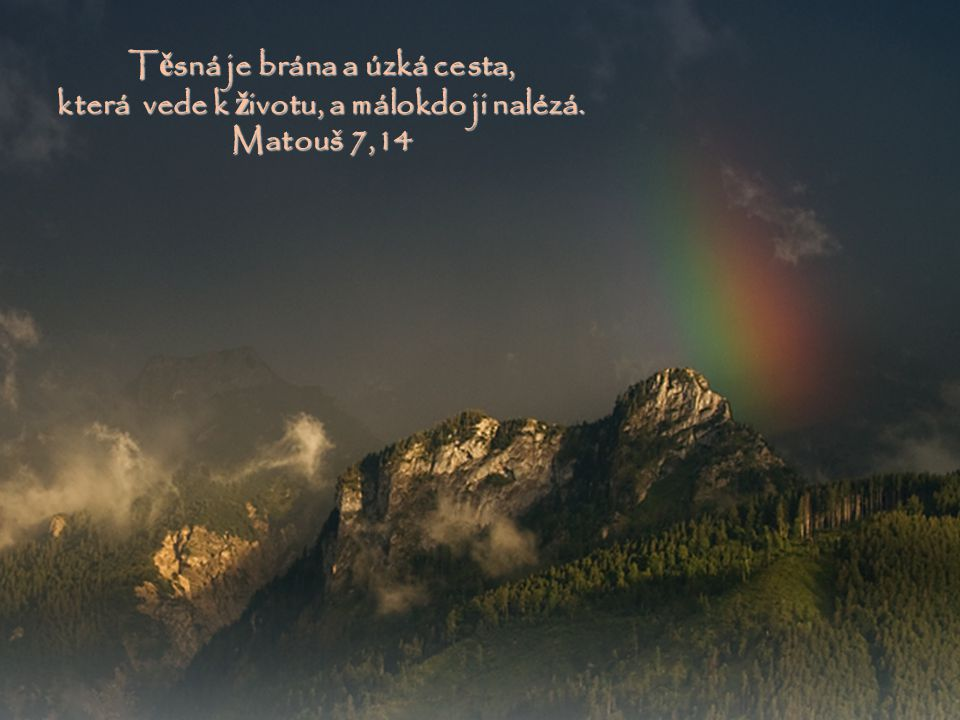 Vid ě l jsem jejich cesty ; p ř esto je uzdravím, znovu je povedu a út ě chu jim navrátím... Izajáš 57,18