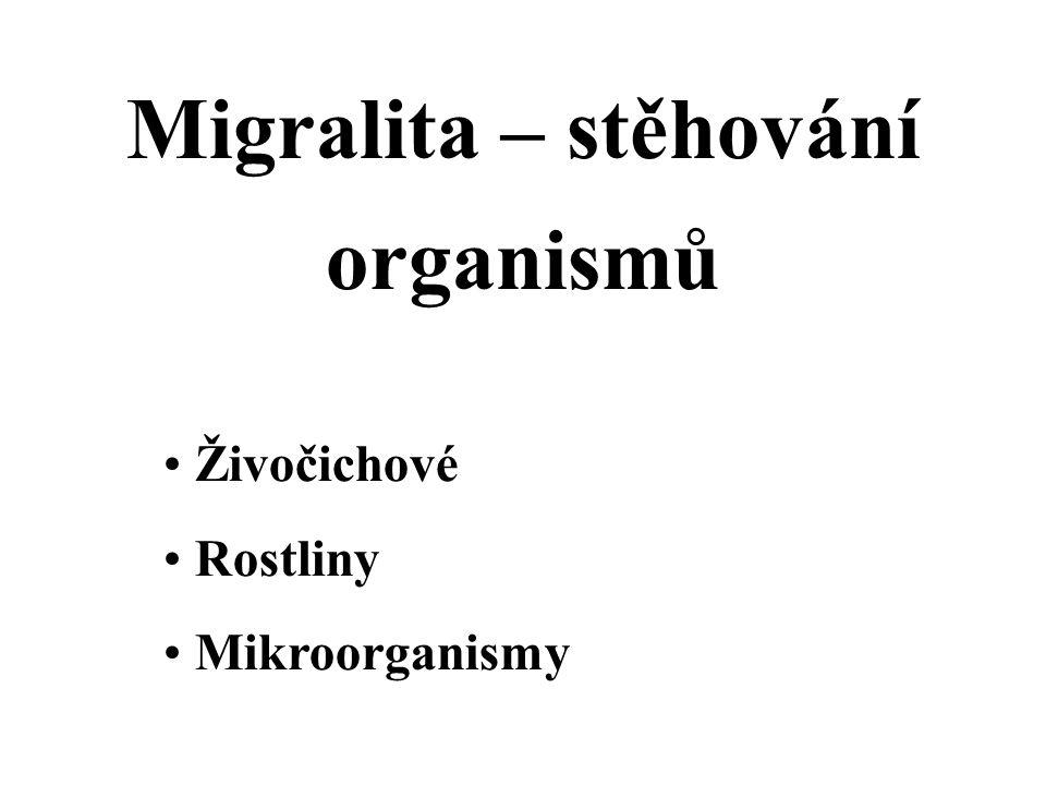 Migralita – stěhování organismů Živočichové Rostliny Mikroorganismy