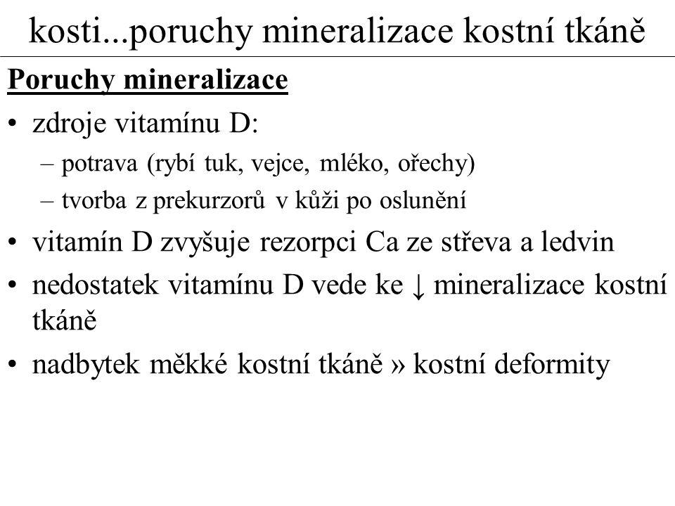 kosti...poruchy mineralizace kostní tkáně Poruchy mineralizace zdroje vitamínu D: –potrava (rybí tuk, vejce, mléko, ořechy) –tvorba z prekurzorů v kůž