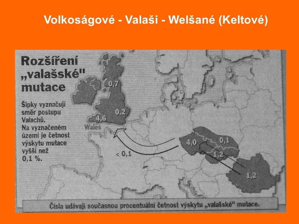 Volkoságové - Valaši - Welšané (Keltové)