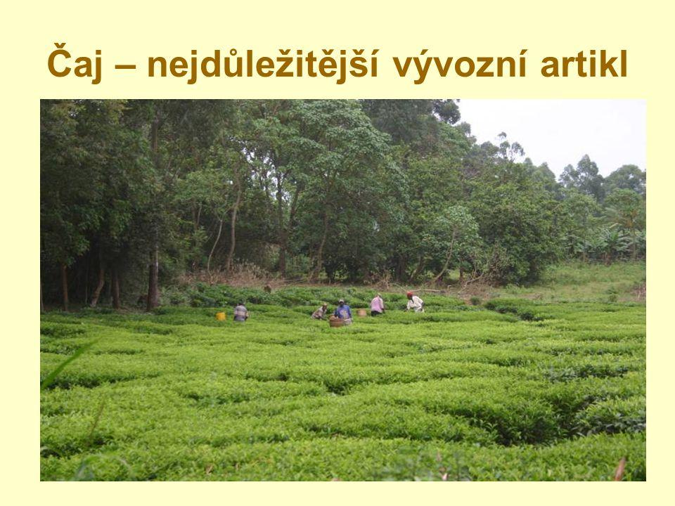 Hlavní problémy vesnických oblastí - Mnoho sirotků a vdov - Extenzivní zemědělství - 95% vesnic bez elektřiny- Nedostupnost vody - Chybí ekonomický rozvoj