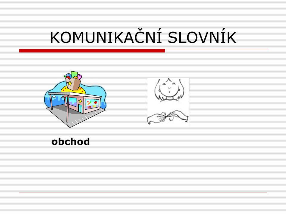 ZÁKLADNÍ VZDĚLÁVÁNÍ DĚTÍ SE SLUCHOVÝM POSTIŽENÍM  základní školy pro děti se sluchovým postižením  individuální integrace  podmínky začlenění do jakékoliv ZŠ školní zralost využívání kompenzační pomůcky vyšetření a doporučení SPC