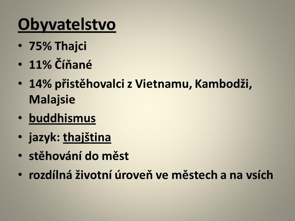 Obyvatelstvo 75% Thajci 11% Číňané 14% přistěhovalci z Vietnamu, Kambodži, Malajsie buddhismus jazyk: thajština stěhování do měst rozdílná životní úroveň ve městech a na vsích