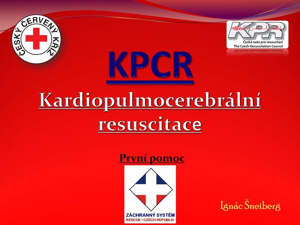 Kardio – srdce Pulmo – plíce Cerebrum – mozek Resuscitace – kříšení CNS – centrální nervová soustava ŽF = ZŽF – životní funkce ZZS – zdravotnická záchranná služba EKG – elektrokardiogram NZO – náhlá zástava oběhu AED – automatický externí defibrilátor ARO – anesteziologicko – resuscitační oddělení Úvod