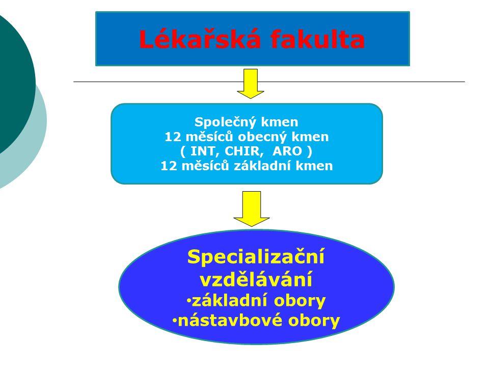 Základní kmeny 1.Anesteziologický 2. Gynekologicko-porodnický 3.